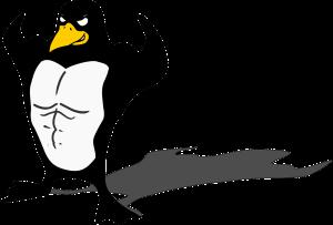 penguin-149971_1280
